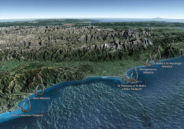 kaikoura-marine-vision