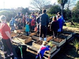Freeville School pupils planting out their raised vegetable garden beds.