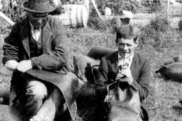 Muttonbirding (1921). Ngā Taonga Sound & Vision.