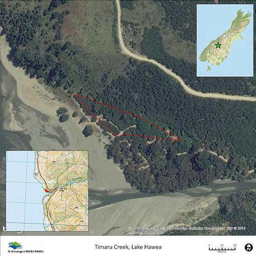 Lake-Hawea-Timaru-River