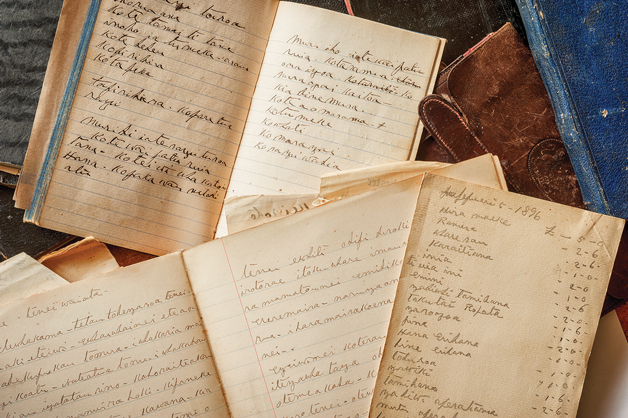 Detail from the diaries of Raniera Ellison.