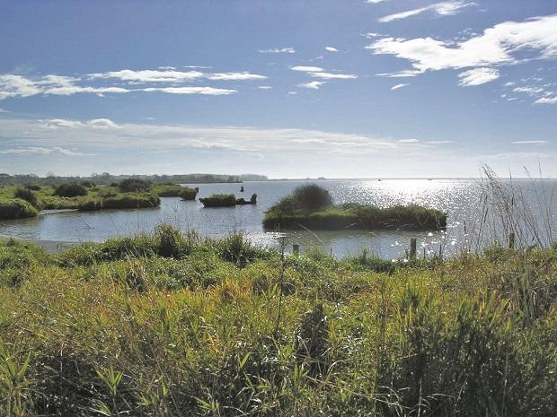 Photo of Wainono Lagoon photo courtesy of Environment Canterbury.