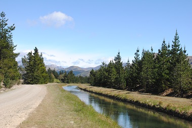 The existing canal, which is part of the Amuri Irrigation Scheme, runs close to the Pilot Farm.